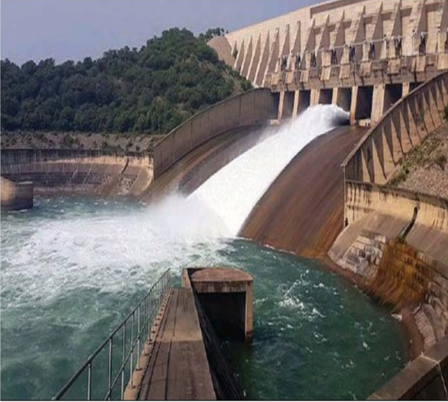 Wapda receives bids for dam part of Diamer Bhasha project